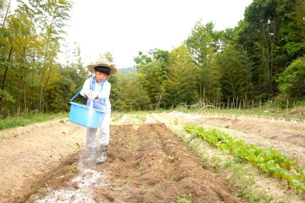 農園07-10